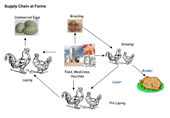 farm-supply-chain